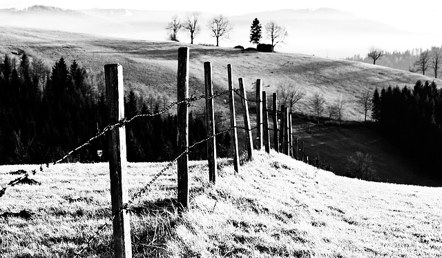 Fence country